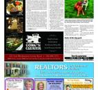 2013 Focus Section Pages