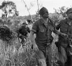 "In this Aug. 19, 1965, file photo, made by Peter Arnett, a U.S. Marine who was wounded in the head as he fought against the Viet Cong from inside an amphibious tank, is led to an evacuation helicopter landing zone at Van Tuong, Vietnam. More than two bitter decades of war in Vietnam ended with the last days of April 1975. Today, 40 years later, Arnett has written a new memoir, ""Saigon Has Fallen,"" detailing his experience covering the war for The Associated Press. (AP Photo/Peter Arnett, File)"