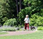 A woman walks her dog in the Doris Duke Center Gardens at the Sarah P. Duke Gardens in Durham, N.C.  (Photo by Lisa Esquivel Long of The News-Sentinel)