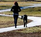 Taking advantage of the mild weather, a young woman walks her Great Dane at Lakeside Park on Feb. 25. (Photo by Ellie Bogue of The News-Sentinel)