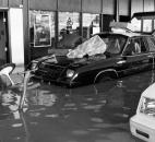 Fifteen automobiles in Poinsatte Motors' new-car showroom at 200 S. Clinton St. were partially submerged, even though they had been driven atop sandbags.