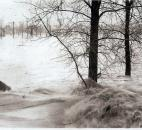 Fast-moving water gushed over an unidentified riverbank. (Photo courtesy of Elizabeth Niblick)
