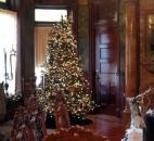 Cheryl Brockman of A Party Apart decorated the dining room at Brookside.