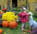 "Joel E. Esslinger entered this photo of Makenna Esslinger enjoyed the fall colors at the Hilgers Pumpkin Patch. ""She always seems to like the animals, too!,"" he said."