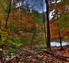 "Denny Beck took this photo Oct. 6 at Lindenwood Nature Preserve in Fort Wayne. ""The pond at Lindenwood is one of my favorite spots to take colorful fall photos,"" he said."