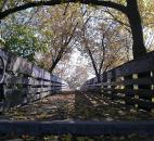 Kurt Whited took this photo with his phone of the Headwaters Park bridge to the Old Fort.
